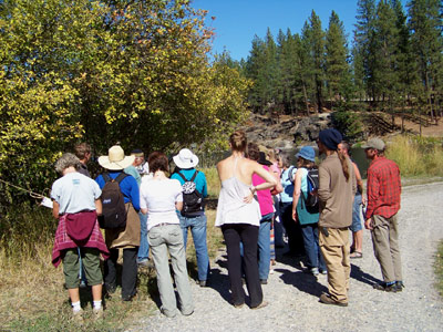 Permaculture Plant Walk at Heartsong Retreat Center